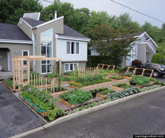 garden-yard