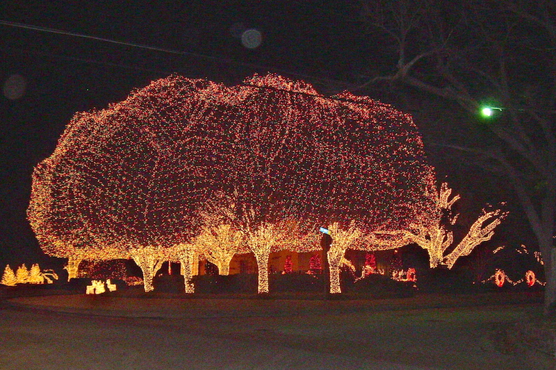 //.carangel.com/photos/nloimages/iimages/ & Christmas Light Ideas for Outdoor Trees | Custom Builders