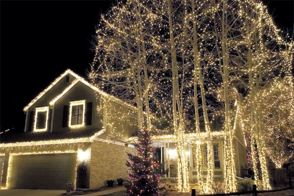 Outdoor Tree Lights : Custom Builders